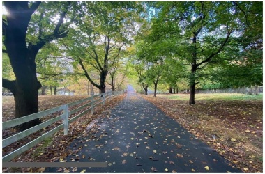 Land, For Sale, Middletown Lincroft Road #R, Listing ID 215220200, Middletown, Monmouth, New Jersey, United States, 07748,